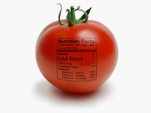 gmo-food1