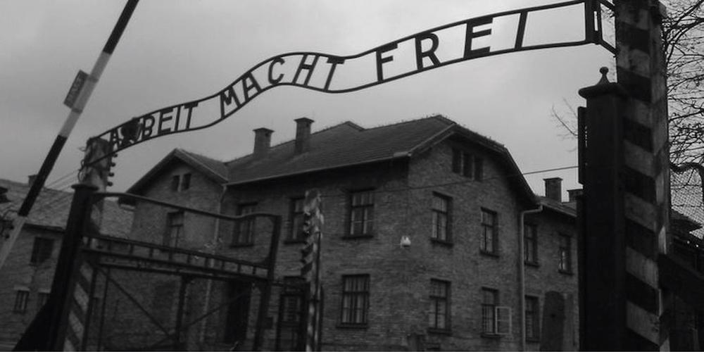 L industrie de la terreur aux origines du nazisme le - Le comptoir de l industrie ...